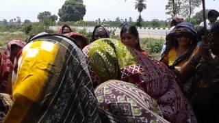 Basu Behera Sambalpur Marriage Party