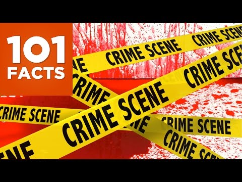 watch 101 Facts About Crime and Punishment