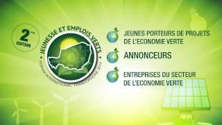 Niger Vert