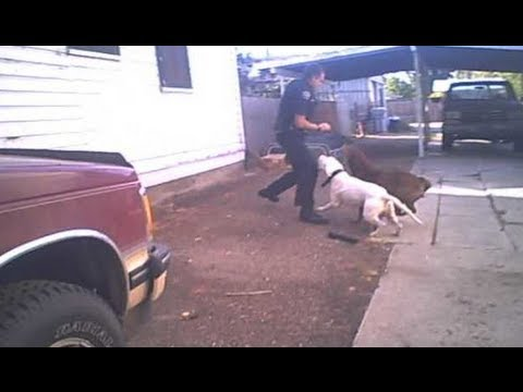 Graphic Content Nampa police release video of dogs attacking officer prior to shooting