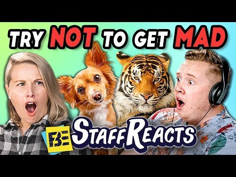 TRY NOT TO GET MAD CHALLENGE 3 ft. FBE Staff