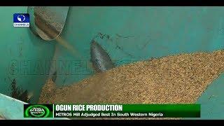 Ogun Mitros Rice Adjudged Best In South West