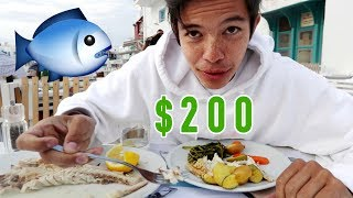 WE PAID $200 FOR A FISH?!