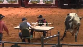 BRI 2012 Bull Poker