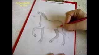 ein pferd zeichnen einfach daikhlo. Black Bedroom Furniture Sets. Home Design Ideas