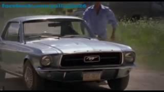 Pânico na Floresta 1 Filme de Terror Completo Dublado HD 720p