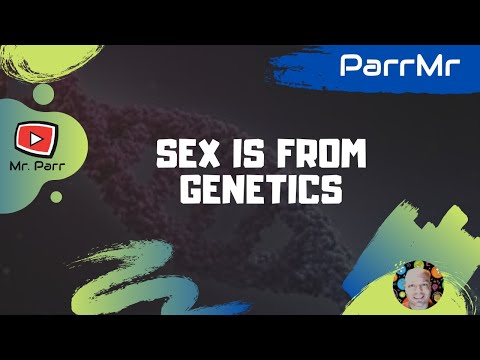 Xxx Mp4 Sex Is From Genetics Song 3gp Sex