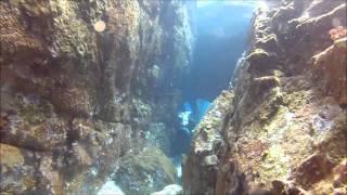 Trek Divers aux Seychelles, la plongée en scooters