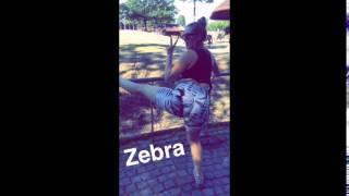 Twerk Queen Louise vs. Zebra - Twerk OFF