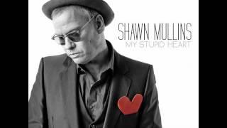 Shawn Mullins - Ferguson
