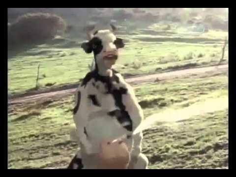 Xxx Mp4 Lutando Kung Fu Com Vaca Louca 3gp Sex