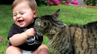 pc mobile Download Best BABIES LAUGHING at ANIMALS! - CAUTION; Extremely funny compilation!