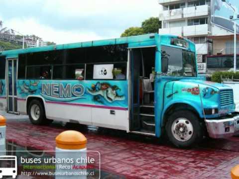buses acapulco urbanos 2