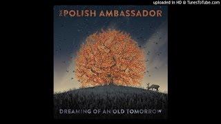 Camino Rojo ft Lulacruza - Dreaming of an Old Tomorrow - The Polish Ambassador