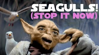 "YOBAMA SINGS ""SEAGULLS! (Stop It Now)"""