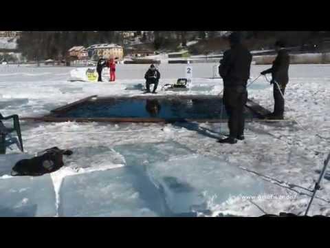 Xxx Mp4 XXX Stage Anis Lavarone ICE DIVING 2015 02 01 3gp Sex