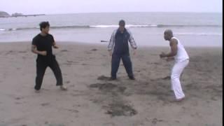 Karate vs Capoeira