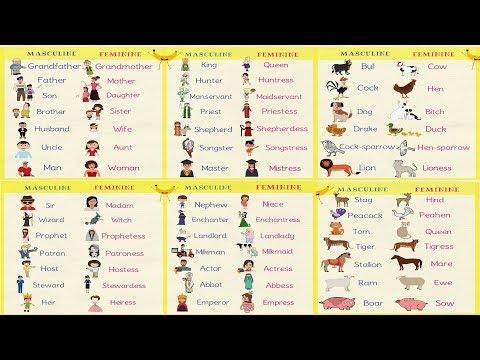 Gender of Nouns in English Grammar Masculine and Feminine Nouns