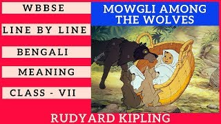 Mowgli Among The Wolves By Rudyard Kipling Class VII Bengali Meaning WBBSE