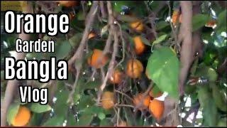 Bangla Video at the Park and Orange Garden for Bangladeshi