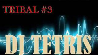 Tribal Mix - Dj Tetris - SET BicenTribal 2010 (video 3) (Trival T3