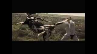 AD Pixar - Karate Cow [Lawak/Funny]