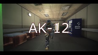 AK-12 Guerilla FragShow