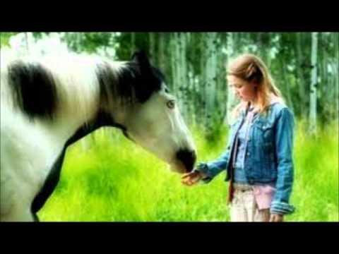 Xxx Mp4 My Top 10 Favorite Horse Movies 3gp Sex