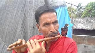 আমার সোনার ময়না পাখি শাহাজাহানের বাঁশির সুর Tune of Bamboo of Shahjahan