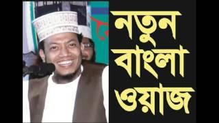 bangla waz 2016 amir hamza (বাংলার জাকির নায়েক)