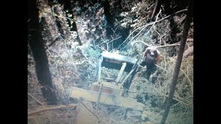 A Graphic Skidder Accident