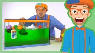 Blippi Slime | Sink or Float Science for Kids