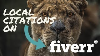 How To Get Local Citations on Fiverr | Local SEO