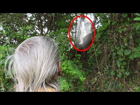 Real ghost attack video | ghost caught on camera in indian village | scary tree
