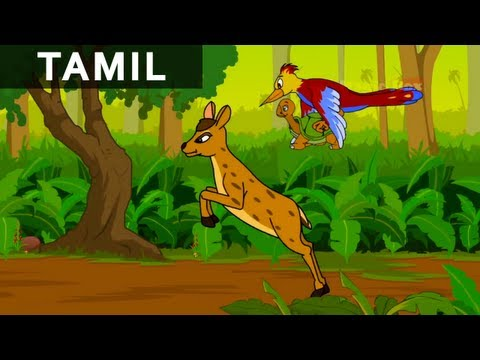 Woodpecker, Deer and Tortoise - Jataka Tales In Tamil - Animation / Cartoon Stories For Kids