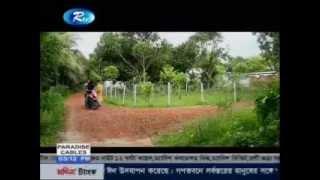 Coktail Bangla Natok,Eid natok 2015  YouTube