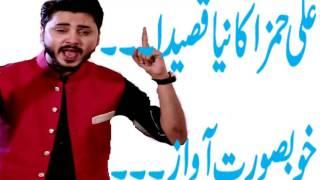 QASIDA-Ali Hamza Ali Ali Dum Dum/NEW 2017