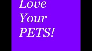 Love your pets!