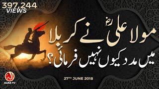 Maula Ali (as) Ne Karbala Mein Madad Kiyon Nahen Farmayi? | Younus AlGohar | ALRA TV