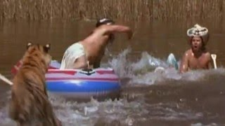 Bengal Tiger vs Inflatable Boat (Wildboyz in India)