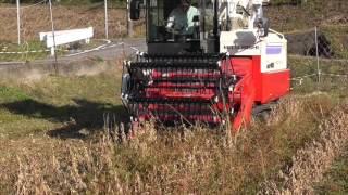 2015年農業生産法人Soyファーム大豆収穫記録