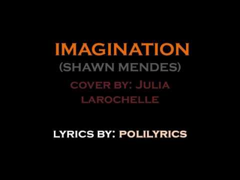 Imagination Shawn Mendes Cover By Julia Larochelle