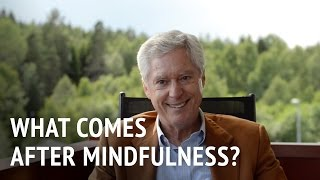 Dr Alan Wallace – What Comes After Mindfulness?