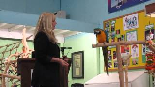 Part 1 - Target Training B&G Macaw with Barbara Heidenreich at Rodies Feed & Pet Supply
