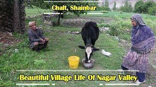 The Beautiful & Peaceful Life In Chalt,  Nagar Valley - Gilgit Baltistan - Pakistan