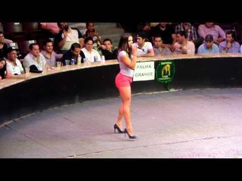 Xxx Mp4 Ale La Jarocha De Guerra De Chistes En El Palenque AGS Feria 2014 2 3gp Sex