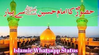 Hazrat Muhammad S.A.W K Imam Husain Sa Payar   Islamic whatsapp Status   Peer Saqib Shami
