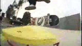 Scott Pazelt - The Storm