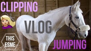 Vlog | Clipping Casper and Showjumping | This Esme