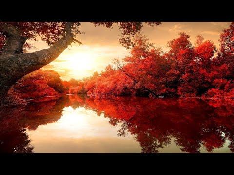 Beautiful Relaxing Music Romantic Music Piano Music Violin Music Cello Music ★115